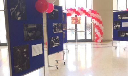 """Con una exposición fotográfica promovió hoy la Escuela de Obstetricia y Puericultura la """"semana mundial del parto respetado"""" 2018"""
