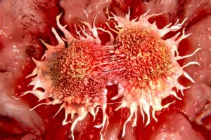 cancer-cells-dividing